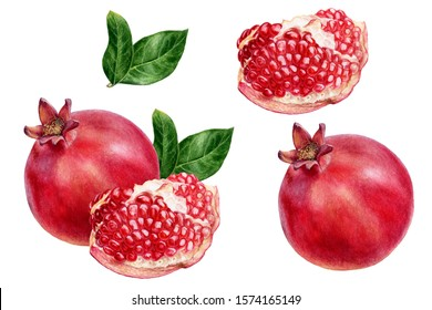 Pomegranate set composition watercolor isolated on white background