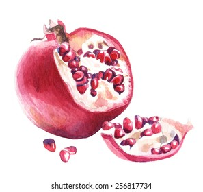 Pomegranate. Watercolor illustration.
