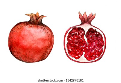 Pomegranate's front and back