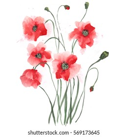 poppies , painted in gouache. Stylized Chinese painting illustration
