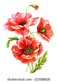 Poppies. Watercolor on paper