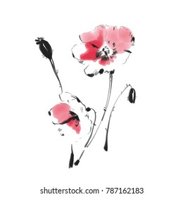 Poppy flower watercolor sketch. Botanical hand drawn art. Floral elements isolated.