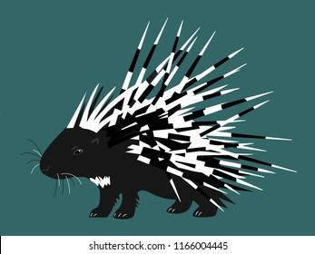 Porcupine - animal graphic