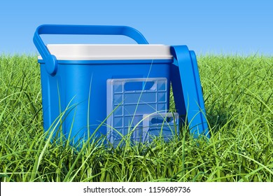 Portable Cool Box on the green grass against blue sky, 3D rendering