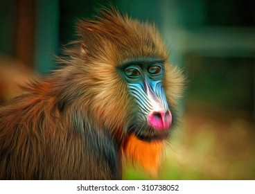 Portrait of the adult mandrill drawing filter