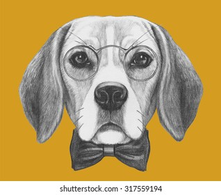 Portrait of Beagle Dog with glasses and bow tie. Hand drawn illustration.