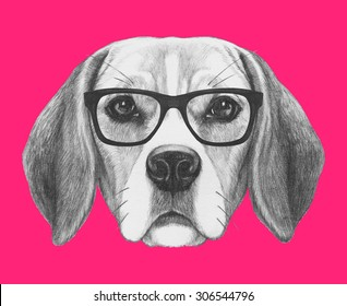 Portrait of Beagle Dog with glasses. Hand drawn illustration.