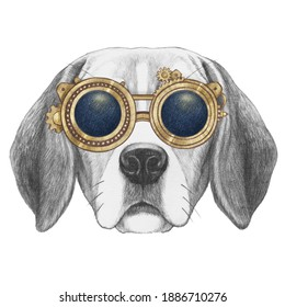 Portrait of Beagle with goggles. Hand-drawn illustration.