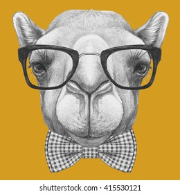 Portrait of Camel with glasses and bow tie. Hand drawn illustration.