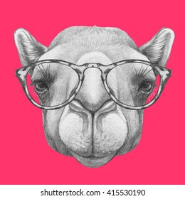 Portrait of Camel with glasses. Hand drawn illustration.