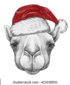 Portrait of Camel with Santa Hat. Hand drawn illustration.