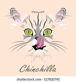 Portrait of a cat licks