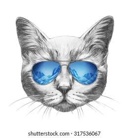 Portrait of Cat with mirror sunglasses. Hand drawn illustration.
