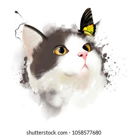 Portrait of a cat with a surprised face and a butterfly on the nose