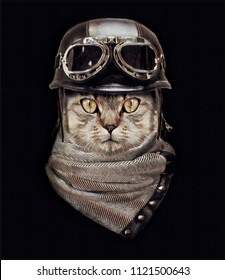 Portrait of Cat with Vintage Helmet.Animal illustration.Custom print design for all types of surfaces.