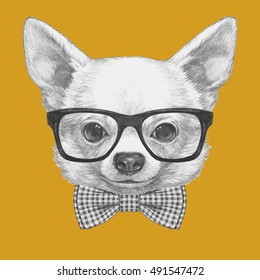 26b423c3b14b Portrait of Chihuahua with glasses and bow tie. Hand drawn illustration.