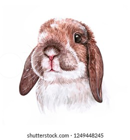 Portrait cute bunny isolated on white background. Watercolor hand-drawn illustration.