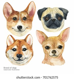 Portrait cute dog set isolated on white background. Watercolor hand-drawn illustration. Popular breed dog. Greeting card design.