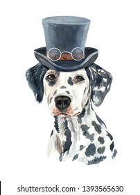 Portrait Dalmatian of a dog. Watercolor hand drawn illustration.Watercolor Dalmatian with hat and sunglasses layer path, clipping path isolated on white background.