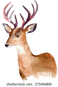 portrait of a deer. animal head, watercolor illustration. deer with large beautiful horns. hipster art.