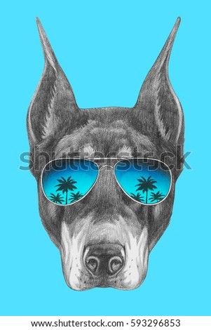 Portrait Doberman Pinscher Mirror Sunglasses Hand Stock Illustration