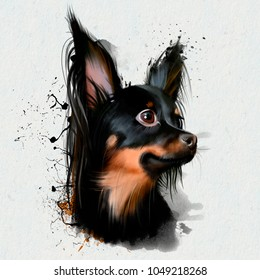 Portrait of a dwarf dog, Chihuahua breed. Companion dog. The smallest dog in the world is named after the Mexican state of Chihuahua. The most ancient breed