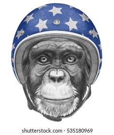 Portrait of Monkey with Helmet. Hand drawn illustration.
