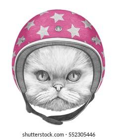 Portrait of Persian Cat with Helmet. Hand drawn illustration.