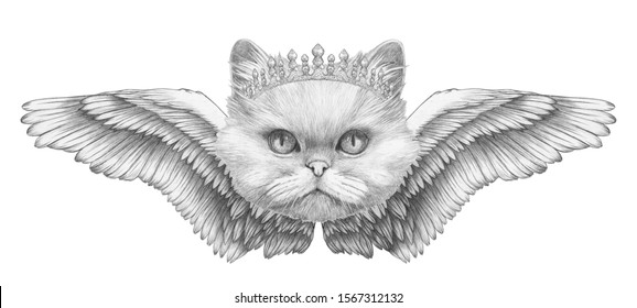 Portrait of Persian Cat with wings. Hand drawn illustration.