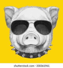 Portrait of Piggy with sunglasses and collar. Hand drawn illustration.