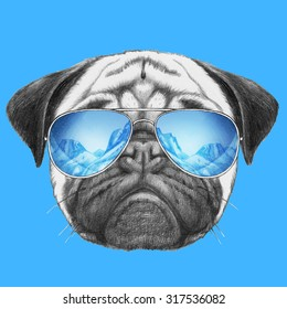 Portrait of Pug Dog with mirror sunglasses. Hand drawn illustration.