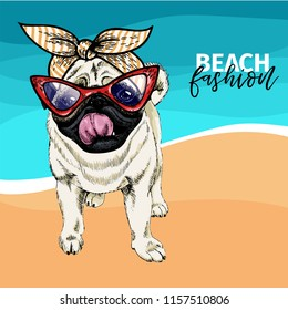 portrait of pug dog wearing sunglasses and retro bandana. Summer fashion illustration. Vacation, sea, beach, ocean. Hand drawn pet portait. Poster, t-shirt print, holiday, postcard, summertime.