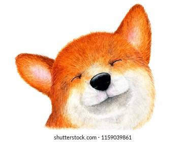 Portrait of Shiba inu, Akita inu. Watercolor illustration. Happy Shiba inu dog enjoying life. Illustration for printing on t-shirts, passport covers, animal feed, etc.