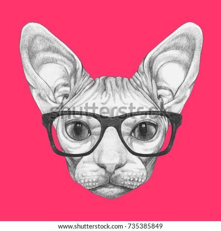 Portrait Sphynx Cat Glasses Handdrawn Illustration em ilustração ... e5657a88e4