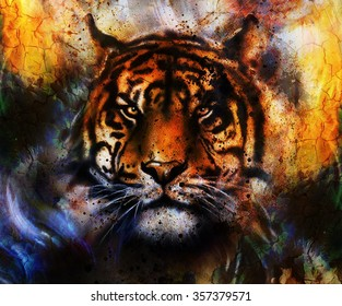 portrait Tiger face, profile portrait, on colorful abstract  background. Abstract color collage with spots