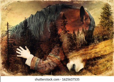 Portrait woman and horse in outdoor. Woman hugging a horse.