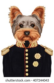 Portrait of Yorkshire Terrier in military uniform. Hand-drawn illustration, digitally colored.