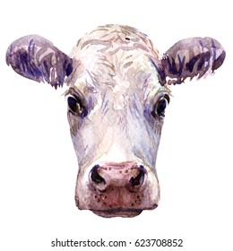 Portrait of young cow head isolated, watercolor illustration on white