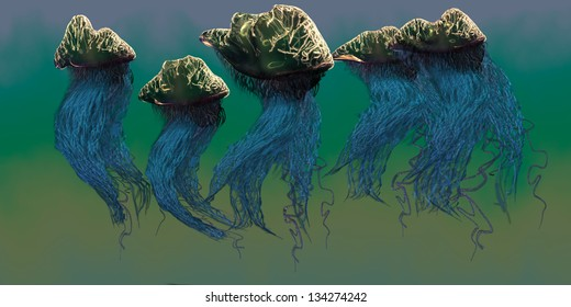 Portuguese Man O' War - The Portuguese Man O' War is a dangerous jellyfish which stings its prey with poisonous tentacles.
