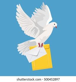 postal dove, pigeon