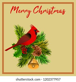 Postcard with allusive theme to Christmas, with a cardinal bird on pine and holly branch. Illustration.