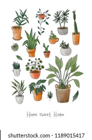 """Postcard with set of lovely home plants and text """"home sweet home"""". Urban jungle style. Gardening."""