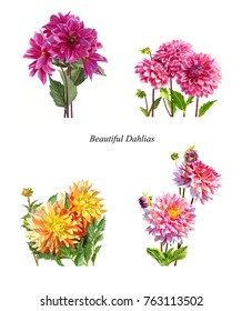 Poster clip art watercolor drawings dahlias with white background