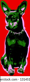 Poster with portrait of a miniature pinscher dog over red background in pop art style