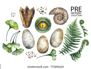 Prehistoric watercolor collection of dinosaur body parts, fossils and plants. Hand painted design elements isolated on white background
