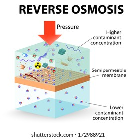 Pressure is applied to the contaminated water forcing water molecules through the membrane. solvent moves from a solution of greater concentration to a solution of lesser concentration.