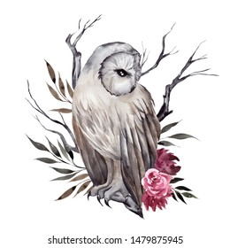 Pretty mistical owl with flowers, brancher and leaves, watercolor hand draw illustration, isolated on white background
