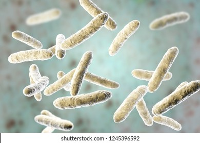 Probiotic bacteria, normal intestinal microflora, 3D illustration. Bacteria used as probiotic treatment, yoghurts, healthy food