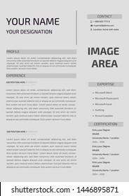 Professional CV resume template design - illustration