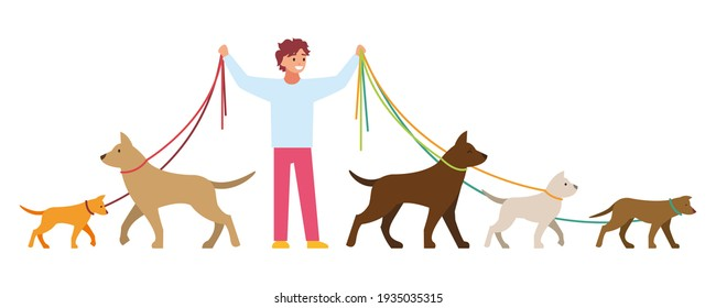 Professional dog walking. A man walks with a pet.  illustration isolated on white background.